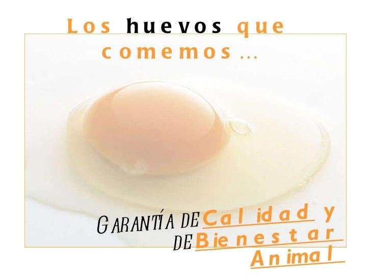 Los  huevos  que comemos… Garantía de  Calidad  y  de  Bienestar Animal