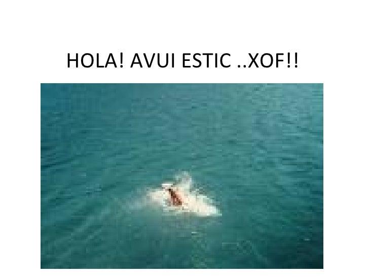 HOLA! AVUI ESTIC ..XOF!!