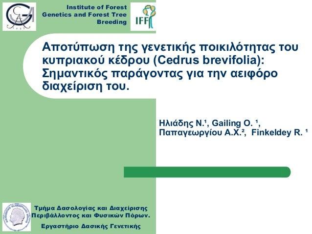 Αποτύπωση της γενετικής ποικιλότητας του Κυπριακού κέδρου (Cedrus brevifolia): Σημαντικός παράγοντας για την αειφόρο διαχείριση του