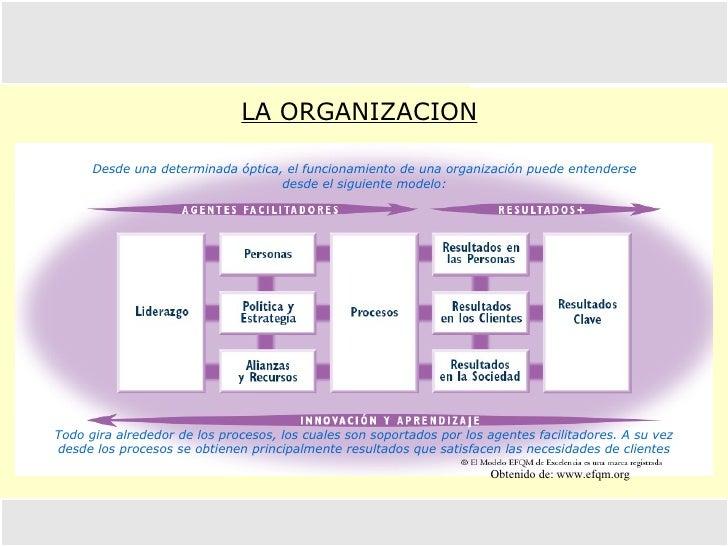 LA ORGANIZACION Obtenido de: www.efqm.org  Desde una determinada óptica, el funcionamiento de una organización puede enten...
