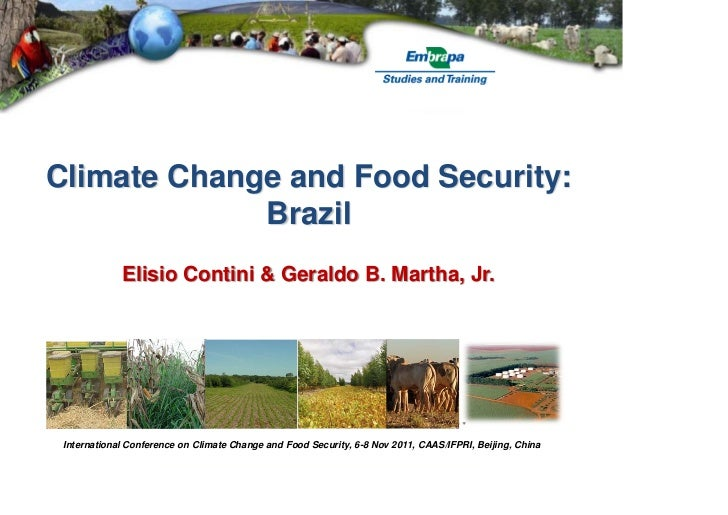 Climate Change and Food Security:             Brazil             Elisio Contini & Geraldo B. Martha, Jr. International Con...