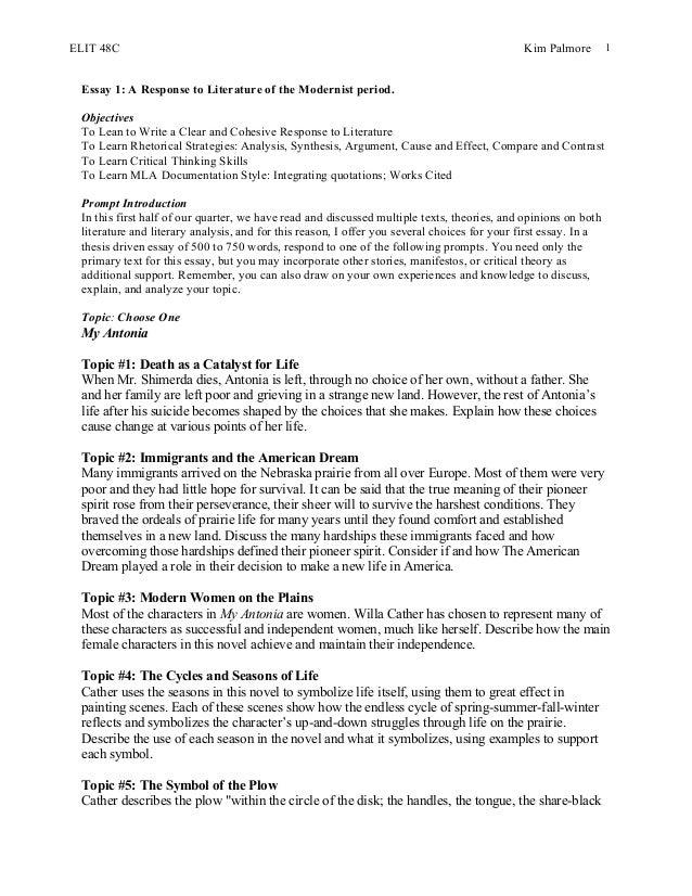 My custom essay meister