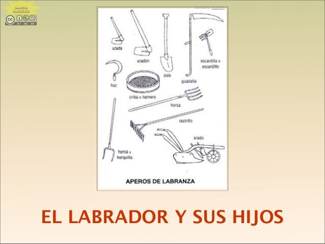 EL LABRADOR Y SUS HIJOS IMAGEN: ULEILACLARA ÁLVAREZ