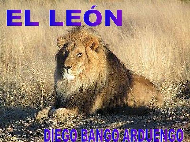 EL LEÓN DIEGO BANGO ARDUENGO