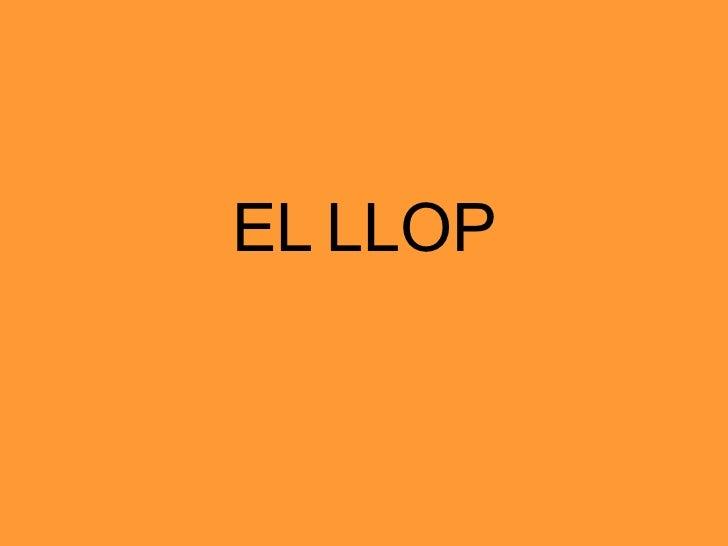 EL   LLOP