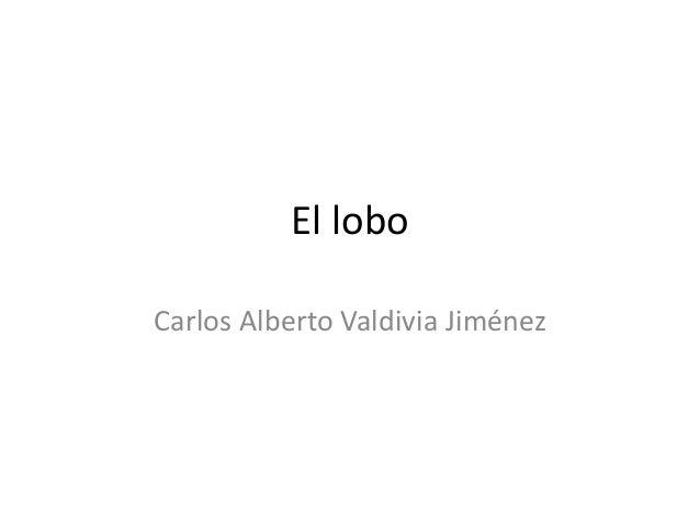 El lobo  Carlos Alberto Valdivia Jiménez