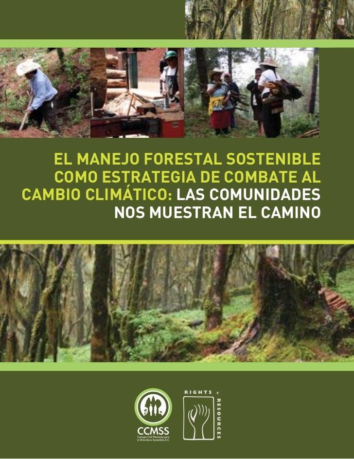 EL MANEJO FORESTAL SOSTENIBLE   COMO ESTRATEGIA DE COMBATE ALCAMBIO CLIMÁTICO: LAS COMUNIDADES          NOS MUESTRAN EL CA...