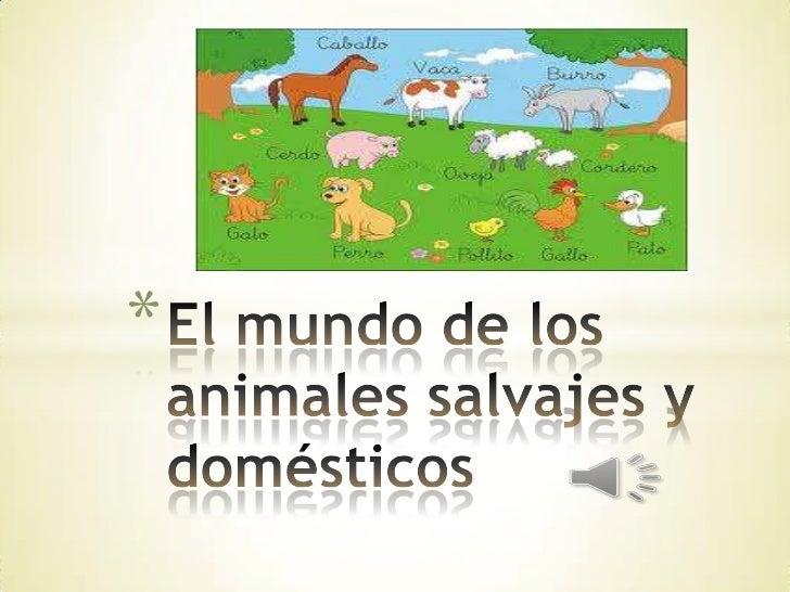 El mundo de los animales salvajes y domésticos