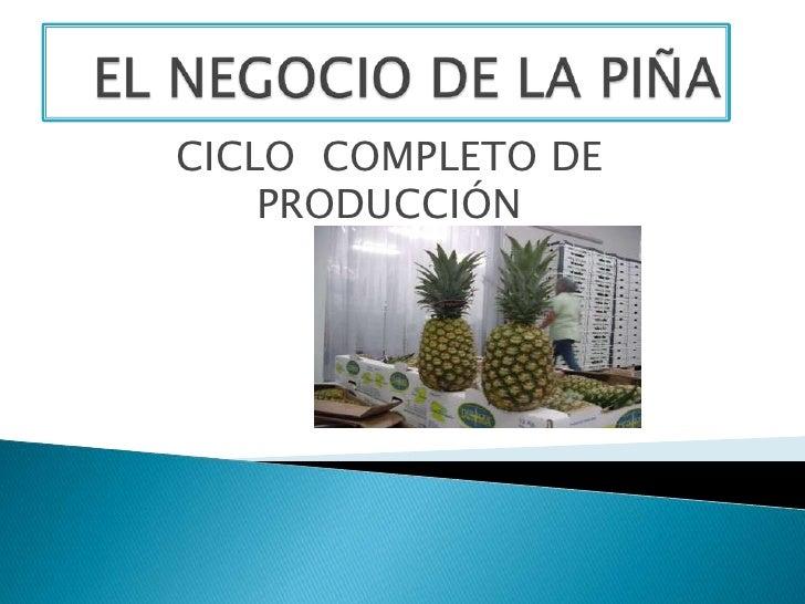 CICLO COMPLETO DE    PRODUCCIÓN