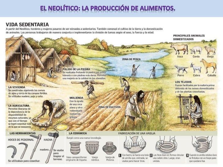 """•   Neolítico significa """"piedra    nueva"""", es decir,    herramientas de piedra    elaboradas con una nueva    técnica, el ..."""