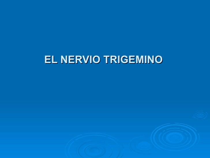 EL NERVIO TRIGEMINO