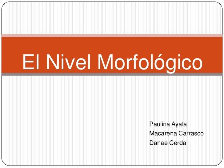 El Nivel Morfológico              Paulina Ayala              Macarena Carrasco              Danae Cerda