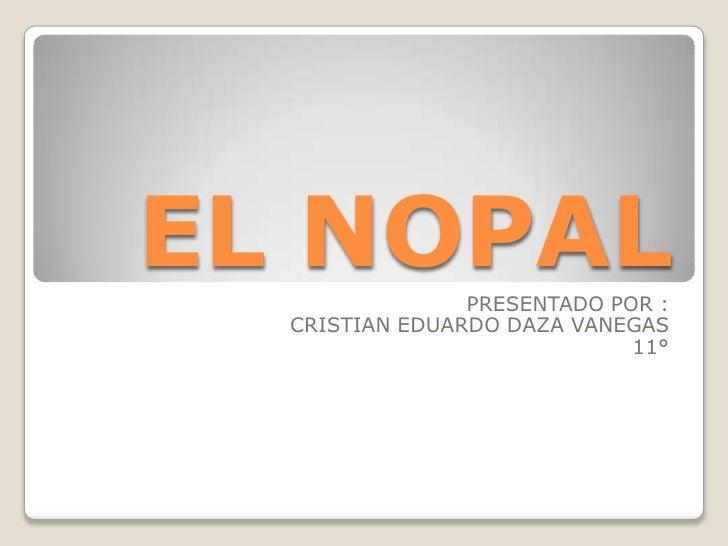 EL NOPAL        PRESENTADO POR :  CRISTIAN EDUARDO DAZA VANEGAS                             11°