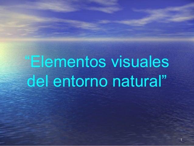 """""""Elementos visualesdel entorno natural""""11"""