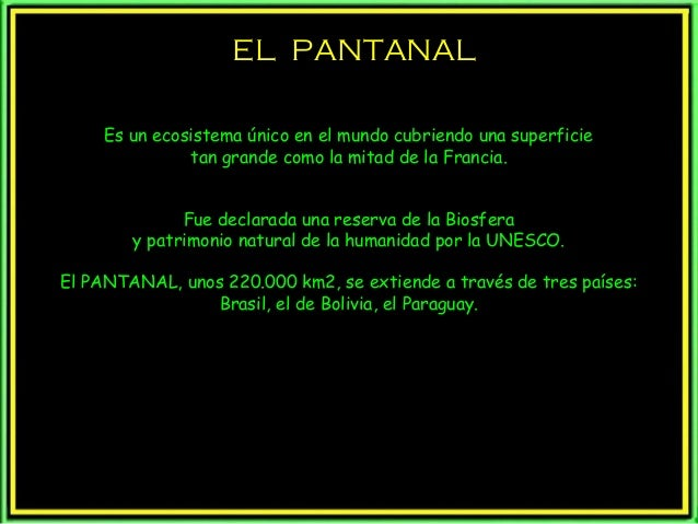 EL PANTANAL Es un ecosistema único en el mundo cubriendo una superficie tan grande como la mitad de la Francia. Fue declar...