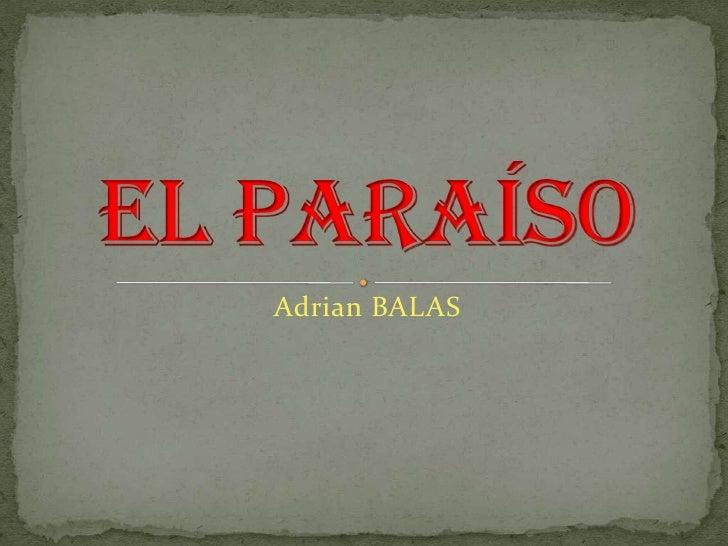 Adrian BALAS