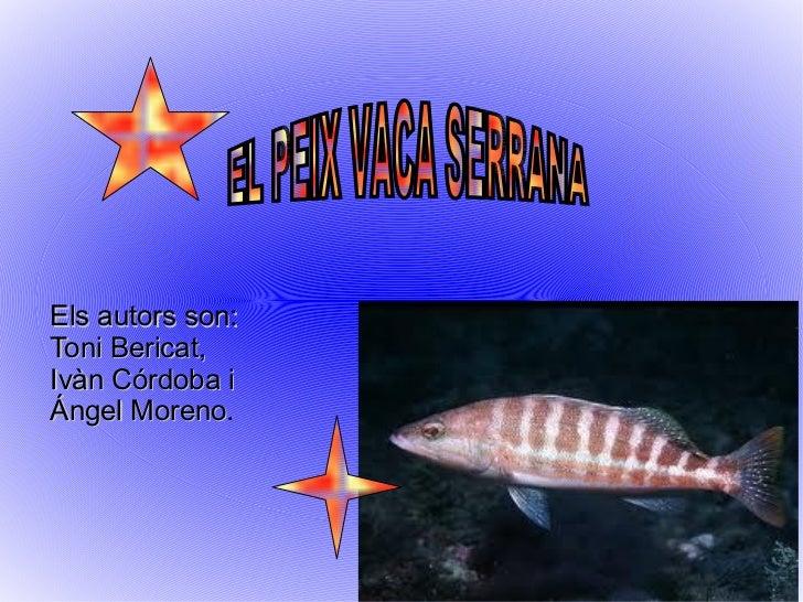 Els autors son:  Toni Bericat, Ivàn Córdoba i Ángel Moreno . EL PEIX VACA SERRANA