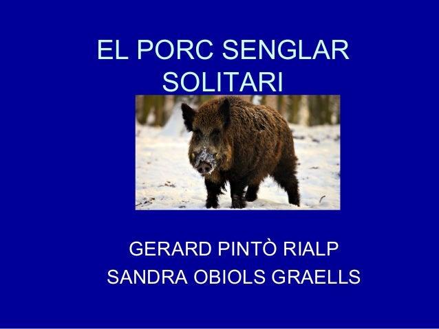 EL PORC SENGLAR SOLITARI GERARD PINTÒ RIALP SANDRA OBIOLS GRAELLS