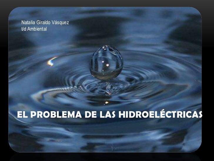 El problema de las hidroeléctricas