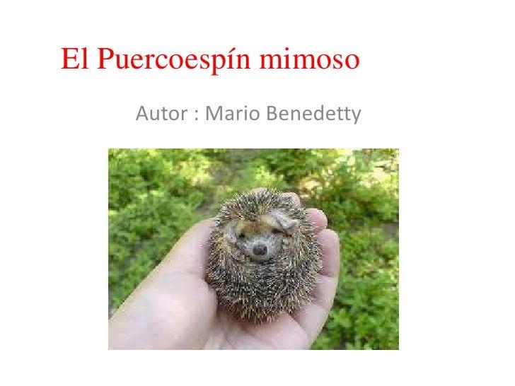 El Puercoespín mimoso<br />Autor : Mario Benedetty<br />