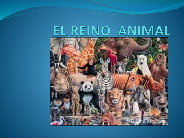 CLASIFICACIÓN DE LOS ANIMALES ANIMALES VERTEBRADOS ANIMALES INVERTEBRADOS