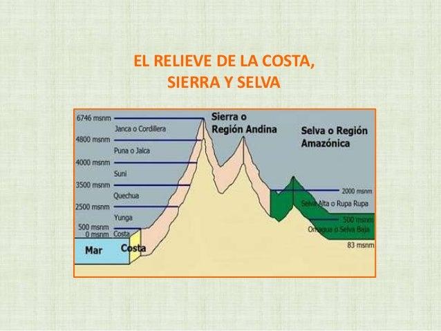 EL RELIEVE DE LA COSTA,SIERRA Y SELVA