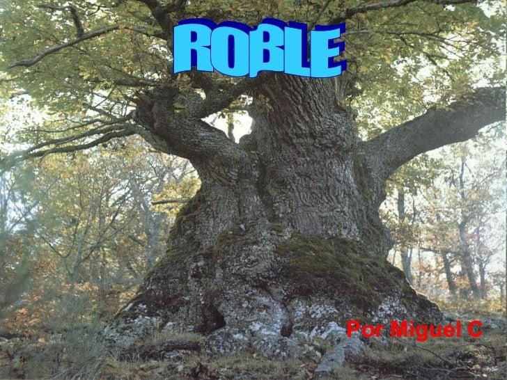 Por Miguel C ROBLE