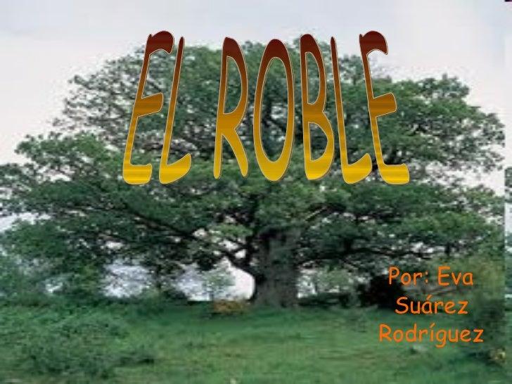Por: Eva Suárez Rodríguez EL ROBLE
