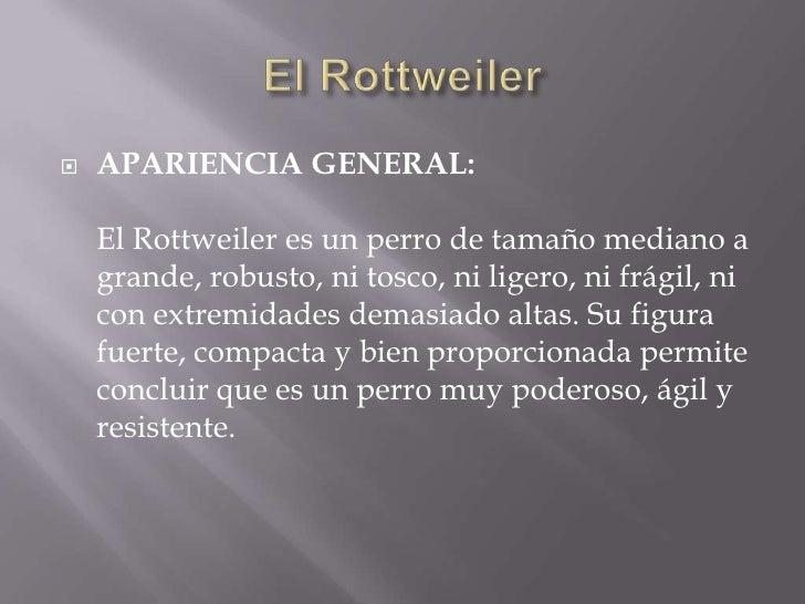 El Rottweiler<br />APARIENCIA GENERAL:El Rottweiler es un perro de tamaño mediano a grande, robusto, ni tosco, ni ligero,...