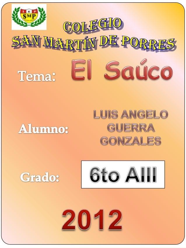 Planta vendita para la cura de   las enfermedadesDefinición:El saúco es un arbustoque crece en áreashúmedas de cultivo enE...
