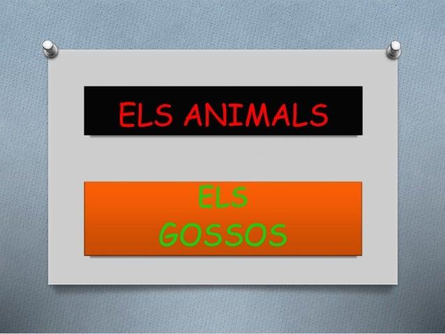ELS ANIMALS ELS GOSSOS