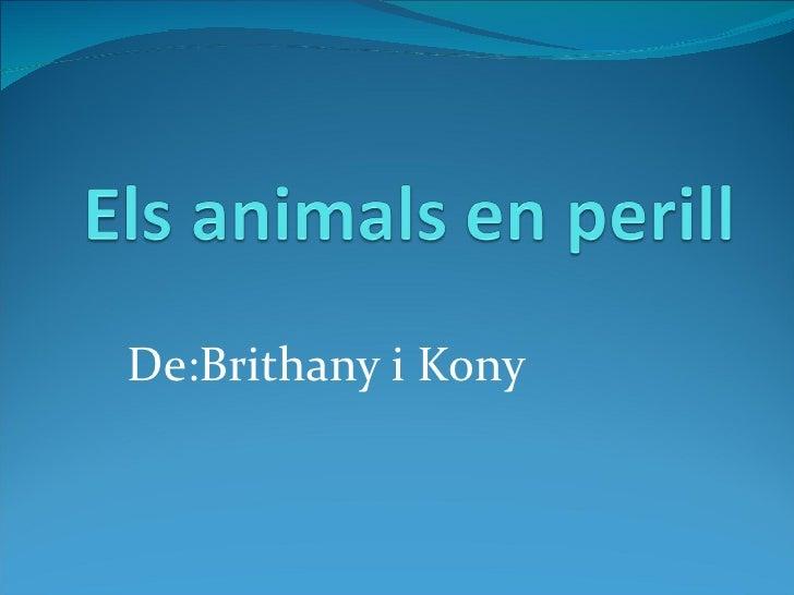 De:Brithany i Kony