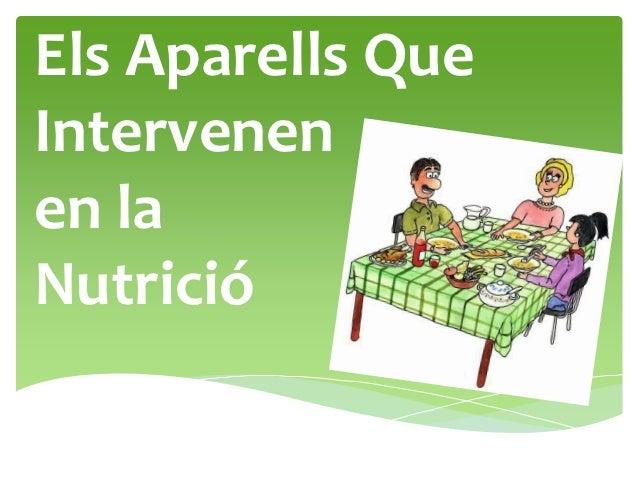 Els aparells que intervenen a la nutrició
