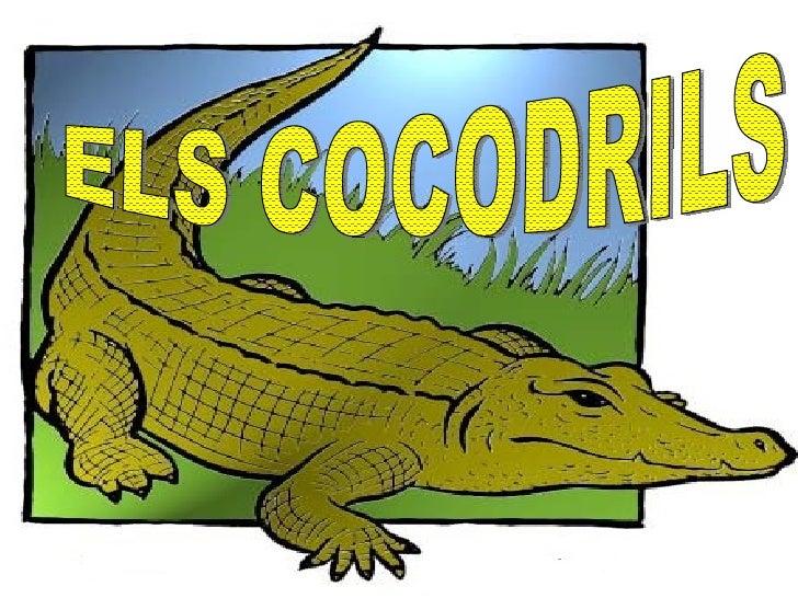 ELS COCODRILS