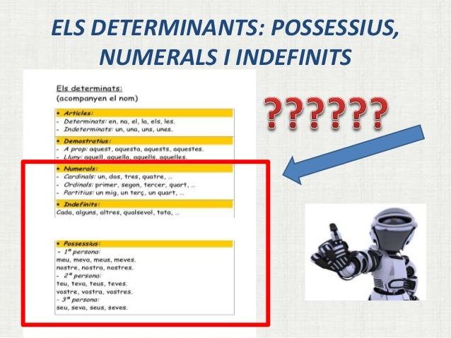 ELS DETERMINANTS: POSSESSIUS,  NUMERALS I INDEFINITS