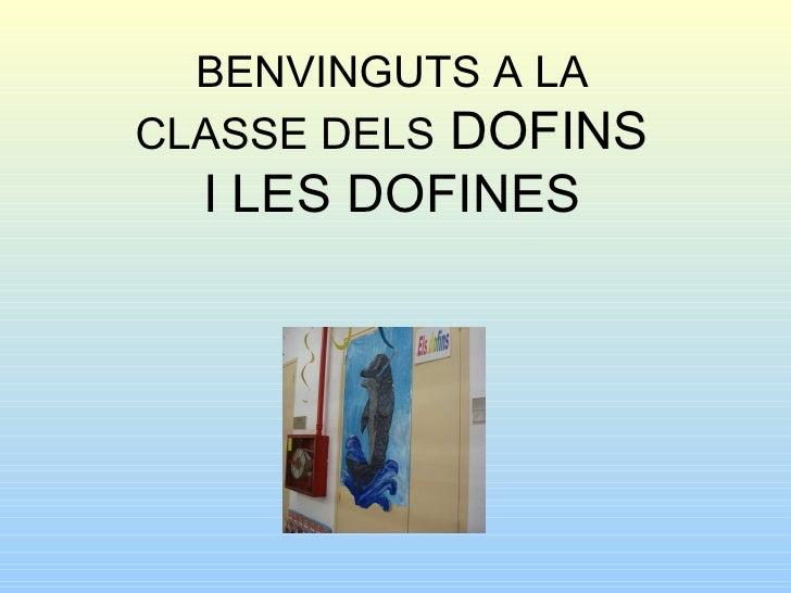 BENVINGUTS A LA CLASSE DELS  DOFINS I LES DOFINES