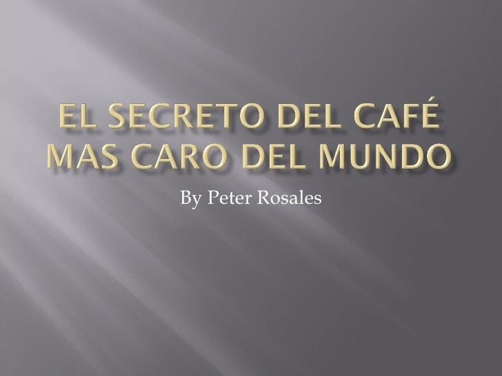 El Secreto Del Café Mas Caro Del Mundo