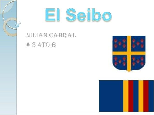Nilian Cabral# 3 4to B