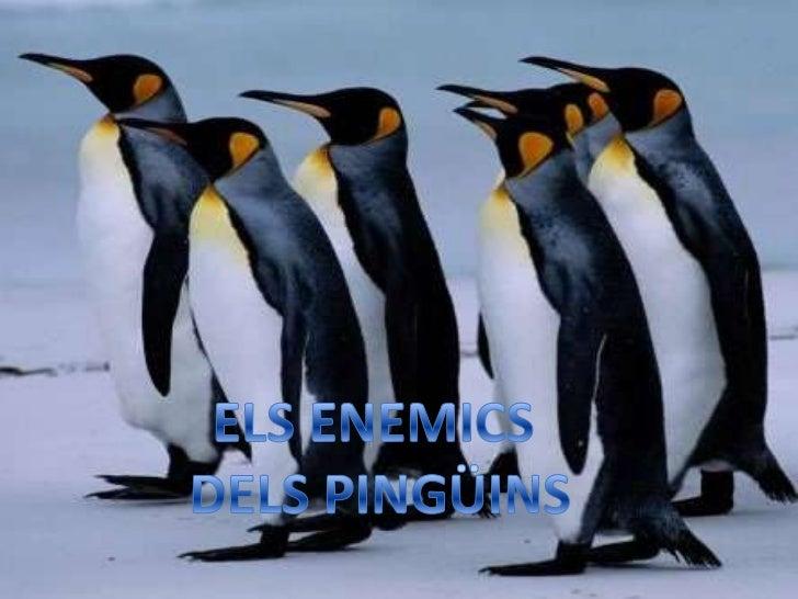 ELS ENEMICS <br />DELS PINGÜINS<br />