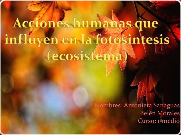 Acciones humanas que influyen en la fotosintesis(ecosistema)<br />Nombres: Antonieta SanaguasBelén MoralesCurso: 1ºmedio<b...
