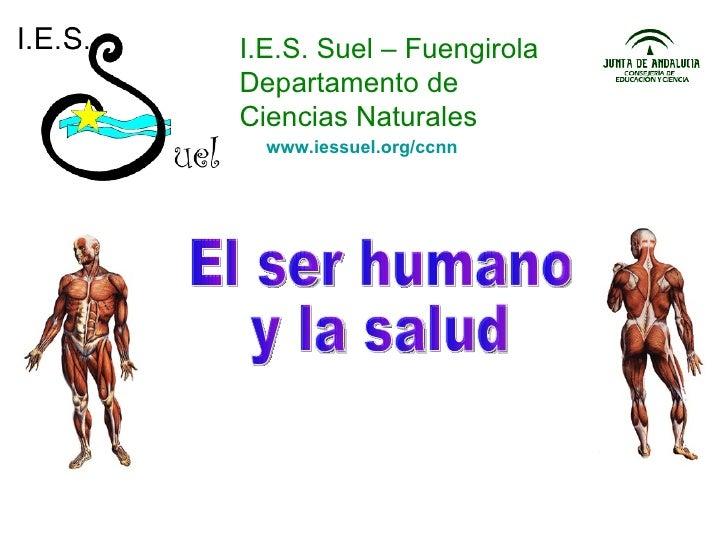 I.E.S. Suel – Fuengirola Departamento de Ciencias Naturales El ser humano y la salud www.iessuel.org/ccnn