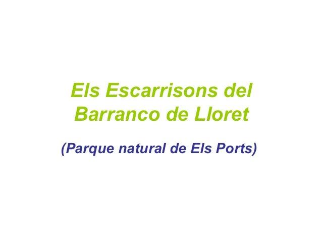 Els Escarrisons del Barranco de Lloret (Parque natural de Els Ports)