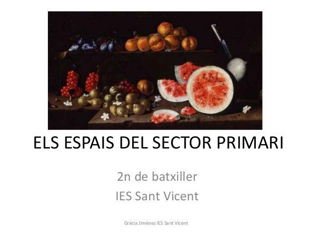 ELS ESPAIS DEL SECTOR PRIMARI         2n de batxiller         IES Sant Vicent          Gràcia Jiménez IES Sant Vicent