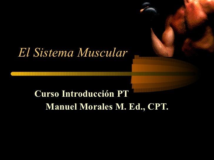 El Sistema Muscular Curso Introducción PT Manuel Morales M. Ed., CPT.