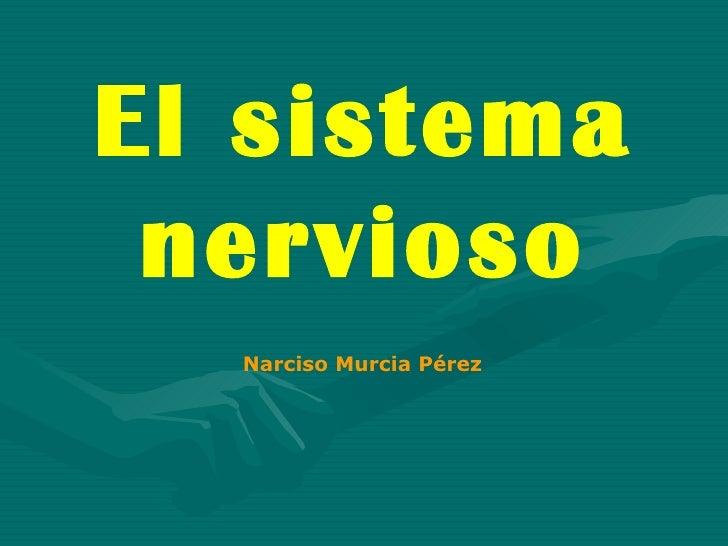 El sistema nervioso Narciso Murcia Pérez