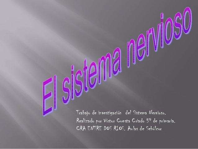 El sistema nervioso_victor