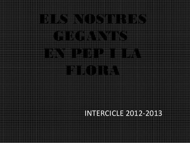 ELS NOSTRESGEGANTSEN PEP I LAFLORAINTERCICLE 2012-2013