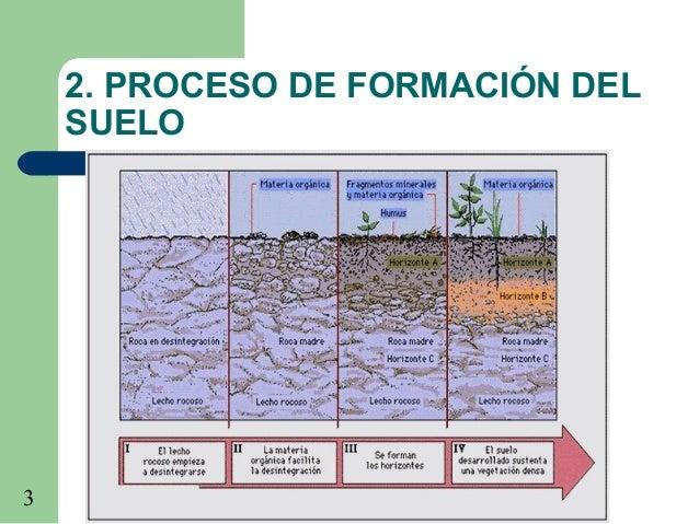 El suelo for Proceso de formacion del suelo