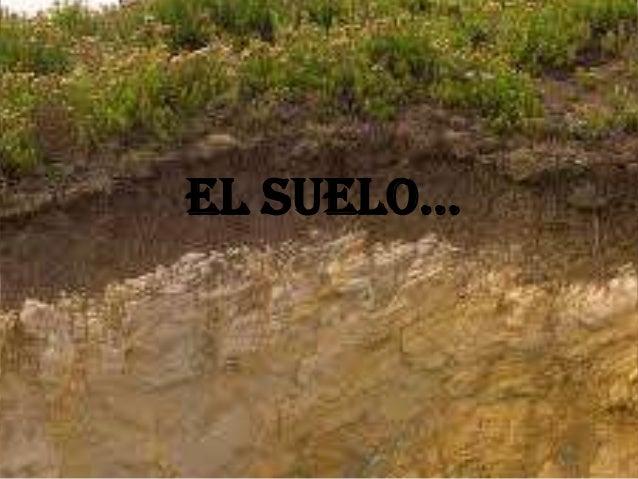EL SUELO…
