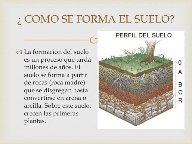el suelo On como se forma el marmol